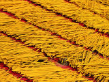 Joss Sticks Drying, Bien Hoa, Dong Nai, Vietnam Photographic Print by Anthony Plummer