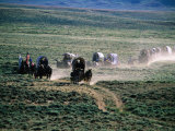 Dusty Horse Carriage Trek, Mormon Pioneer Wagon Train to Utah, Near South Pass, Wyoming Photographic Print by Holger Leue