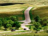 Cars on Wildlife Loop, Custer State Park, Black Hills, South Dakota Photographic Print by Richard Cummins