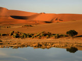 Sossusvlei, Hardap, Namibia Photographic Print by Ariadne Van Zandbergen