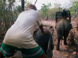 Men Driving Elephants for Ride, Bolaven Plateau, Champasak, Laos Photographic Print by John Elk III