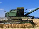 Wheat Harvester, Newell, Tule Lake, California Fotografisk tryk af John Elk III