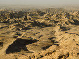 Welwitschia Drive, Namib-Naukluft National Park, Namibia Photographic Print by Ariadne Van Zandbergen