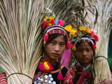 Two Ethnic Ha Nhi Co Cho Girls Carrying Rice Stalks, Muong Tei, Lai Chau, Vietnam Lámina fotográfica por Stu Smucker