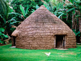 Traditional Kanak House, Lifou Island, Loyalty Islands, New Caledonia Photographic Print by Peter Hendrie