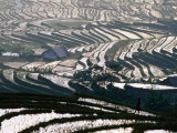 Wet Rice Is Grown in Terraced Mountain Valleys of Northern Vietnam, Sapa, Lao Cai, Vietnam Photographic Print by Stu Smucker