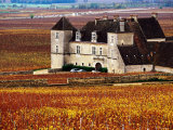Chateau Surrounded by Vines, Burgundy, France Photographic Print by Oliver Strewe