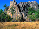 Limestone Towers on Walking Trail from Donna Cave to Royal Arch Cave, Queensland, Australia Photographic Print by Ross Barnett