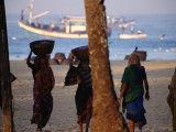 Beach Laborere Haul Baskets of Fresh Marine Produce, Colva, Goa, India Photographic Print by Stu Smucker