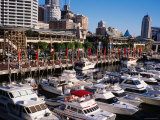 Cockle Bay Wharf Complex, Bondi, Sydney, New South Wales, Australia Photographic Print by Holger Leue