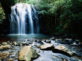 Millaa Millaa Falls, Atherton Tablelands, Queensland, Australia Photographic Print by Holger Leue