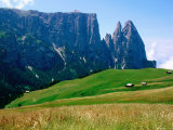 Alpine Meadow with Sciliar Peaks, Dolomites, Italy Photographic Print by John Elk III