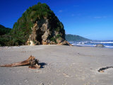 Rock Formation and Driftwood on the Beach at Woodpecker Bay, New Zealand Photographic Print by Ross Barnett