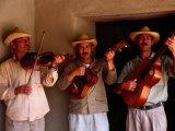 Folk Musicians at Los Aleros Theme Park, Merida, Venezuela Photographic Print by Krzysztof Dydynski