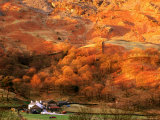 Baysbrown Farm and Slopes of Ligmoor Fell at Great Langdale, England Photographic Print by David Tomlinson