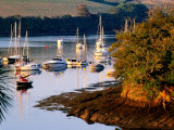 Boats on Kingsbridge Estuary at East Portlemouth, Evening, Salcombe, Devon, England Photographic Print by David Tomlinson