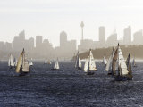Yachts on Sydney Harbour in Late Afternoon Photographic Print by Oliver Strewe