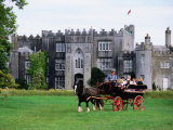Horse Carriage with Birr Castle Demesne, Ireland Photographic Print by Holger Leue