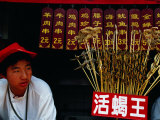 Starfish, Scorpions and Other Snacks for Sale, Wangfujing Dajie, Beijing, China Photographic Print by Krzysztof Dydynski