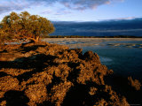 Port Smith Lagoon, Kimberley, Western Australia Photographic Print by Holger Leue