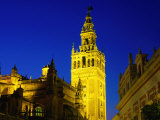 Giralda Illuminated at Night, Seen from Plaza del Triunfo, Sevilla, Andalucia, Spain Photographic Print by David Tomlinson