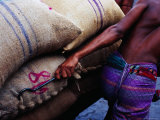Worker Pulling Cart of Rice Sacks at Sadarghat Market, Dhaka, Bangladesh Photographic Print by Richard I'Anson