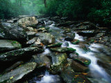 Water Flowing over Rocks in Alum Creek, Great Smoky Mountains National Park, Tennessee Photographic Print by John Elk III
