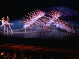 Ballet, Swan Lake Performance, Odesa Opera House, Odesa, Ukraine Fotografisk trykk av Holger Leue