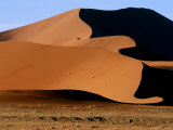 Oryx with Sand Dunes in Background, Namib Desert Park, Hardap, Namibia Fotografie-Druck von Ariadne Van Zandbergen