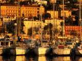 Harbour Yachts and Town Buildings in Morning, Menton, Provence-Alpes-Cote d'Azur, France Photographic Print by David Tomlinson