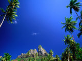 Palm Trees and Sky, Bora Bora, the Society Islands, French Polynesia Fotografisk tryk af Peter Hendrie