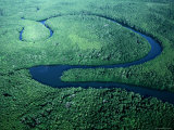 Curling River, Tiwi Islands, Northern Territory, Australia Photographic Print by Bethune Carmichael