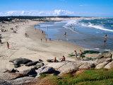 Playa de la Moza Beach, Santa Teresa National Park, Rocha, Uruguay Photographic Print by Krzysztof Dydynski
