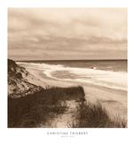 Wellfleet Dune Poster by Christine Triebert