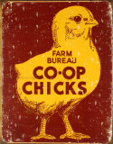 Co-op Chicks Cartel de chapa