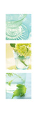 Aqua Spa Triptych Print