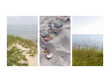 Shells and Dunes Triptych Prints