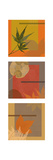 Autumn Collage Triptych Premium Giclee Print