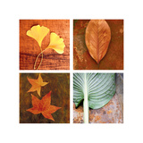 Leaves Arrangement Four Patch Posters