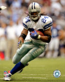 Marion Barber Photo