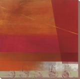 Cepheus Stretched Canvas Print by Leo Burns