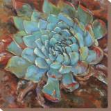 Blue Agave II Reproduction sur toile tendue par Jillian David