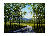 Summer Path Giclee Print by Patty Baker