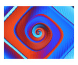 Red And Blue 2 Photographic Print by Vicky Brago-Mitchell