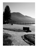 Lake Tahoe Shore Photographic Print by Jason Wolf