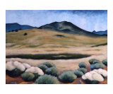View from the Mesa Giclee Print by Gayle Faucette Wisbon