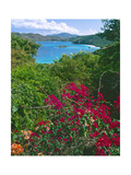 Tropical Colors of Saint John, US Virgin Islands Photographic Print by George Oze