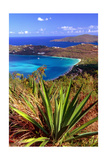 Aerial View, Magens Bay, St Thomas, USV Photographic Print by George Oze