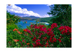 Colorful Caribbean View, St John, Virgin Islands Photographic Print by George Oze