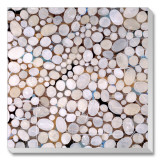 River Pebbles Stretched Canvas Print by Isabel Lawrence